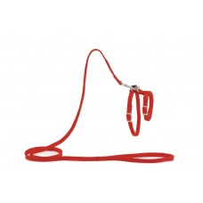 Beeztees - Kattentuigje - Nylon - Rood - 130 cm x 10 mm LOOPLIJN