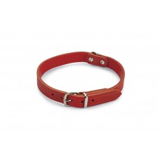 Beeztees - Halsband Hond - Leer - Rood - 35,5-41,5 cm x 18 mm 35