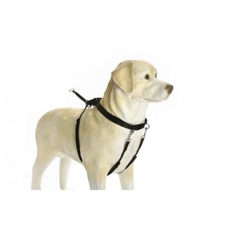 Beeztees Gentle Walker - Hondentuig - Zwart - M M