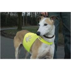 Beeztees Safety Gear Veiligheidsvest - Hond - Geel - M NEK 40-48