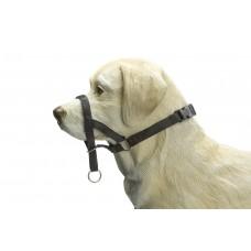 Beeztees Dog Control - Halsband Hond - Zwart - S S