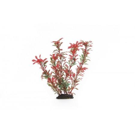 Beeztees Aqua Plant 86051R - Aquariumdecoratie - Plastic 25 CM