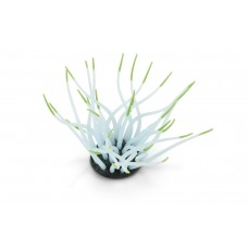 Beeztees Zeeanemoon - Aquariumdecoratie - Groen - 9,5 cm 9,5 X 8