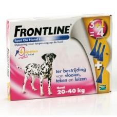 Frontline Hond 20-40KG 3+1GRATIS pipet ACTIEVERPAKKING
