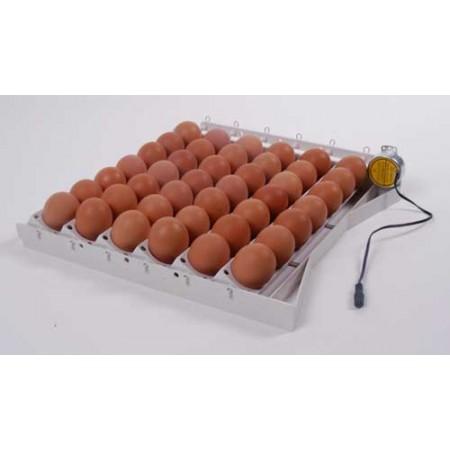 automatisch keerrooster 42 eieren.