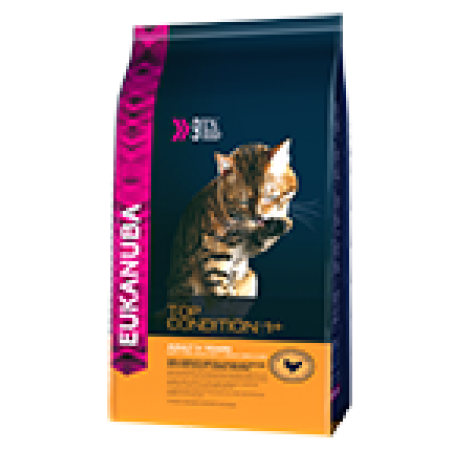 -   Eukanuba cat adult chicken&liver 2 kg