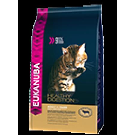 -   Eukanuba cat adult lamb&liver 4 kg